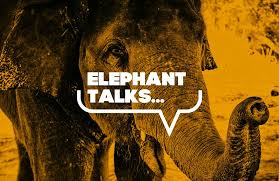 Elephant Talks- Addressing the elephant in the room @ You Belong Here
